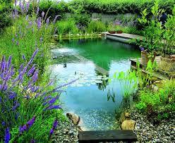 Преимущества искусственного водоема на участке